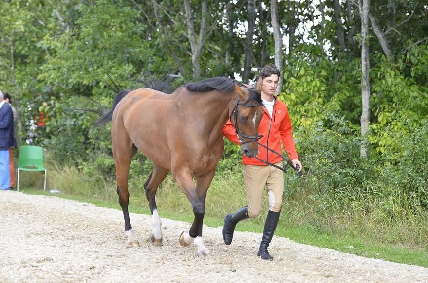 Звезды конного спорта собрались в
