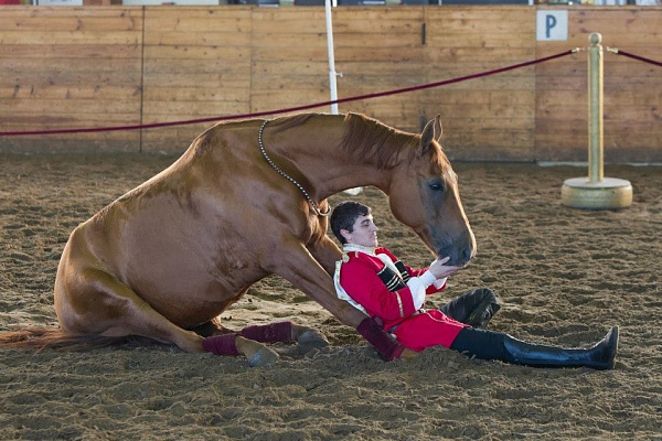 Skill of fancy riding that inspires children to do sports