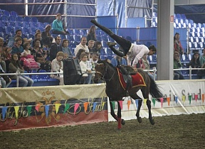 Fancy riding /equiros.ru/