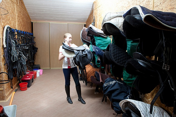 How to look after horse tack?