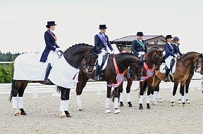 Larisa Bushina won the title of champion of Russia in dressage for the second year in a row