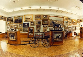 Gadhafi's gift and other exhibits of the museum of horse breeding